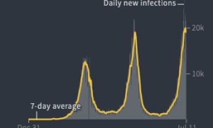 COVID Infection Waves